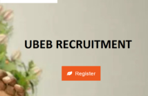 Niger State UBEB Recruitment