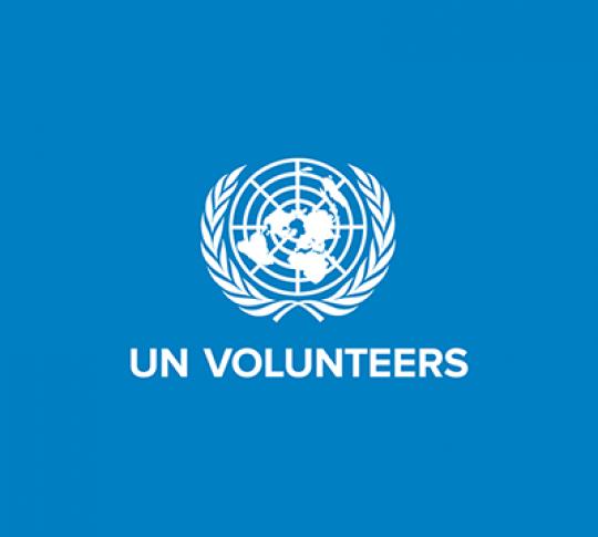 UN Volunteer Recruitment